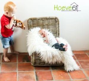Hoeve61 -